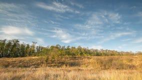 De vorming en de beweging van wolken over de herfst eindeloze groene gebieden van gras in de enorme steppen van Don stock video