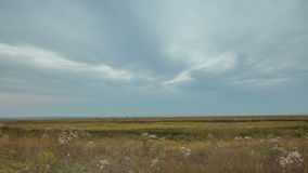 De vorming en de beweging van wolken over de herfst eindeloze groene gebieden van gras in de enorme steppen van Don stock videobeelden