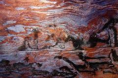 De vorming van de zandsteenkloof, Rose City, Siq, Petra, Jordanië royalty-vrije stock foto