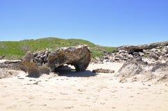 De Vormingen van de kalksteenrots: Pinguïneiland, Westelijk Australië royalty-vrije stock afbeelding