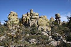 De vormingen van de steen in Chiricahua Stock Foto