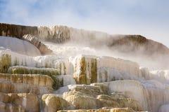 De Vormingen van het travertijnterras bij de Mammoet Hete Lentes in het Nationale Park van Yellowstone stock fotografie