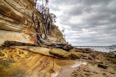 De vormingen van het zandsteen op strand, Tasmanige Stock Afbeeldingen