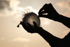 De vormwater van de ballon Royalty-vrije Stock Foto's
