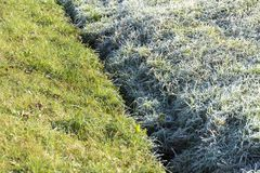 De vorst en ontdooit gras Stock Fotografie
