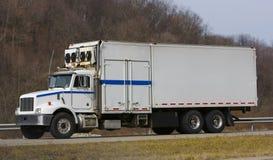 De Vrachtwagen van de koeling Stock Afbeeldingen
