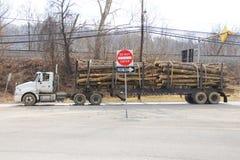 De vrachtwagen van het registreren Vrachtwagen dragend hout of logboek stock fotografie