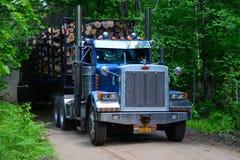De vrachtwagen vervoerende logboeken van de tractoraanhangwagen Stock Foto's