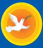 De vrede van de duif Stock Fotografie