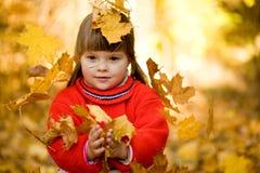 De vreugde van de herfst Royalty-vrije Stock Afbeelding