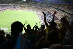 De vreugde van de ventilators bij voetbal Royalty-vrije Stock Afbeeldingen