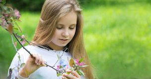 De vreugde van de lente Het wekken van aard Stock Afbeeldingen