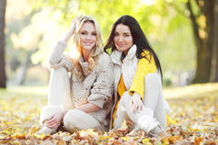 De vrienden in de herfst parkeren Stock Foto's