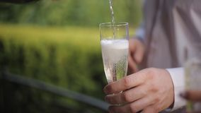 De vrienden drinken champagne kloppend glazen in de bergen celebrating Glazen met fonkelende champagne stock video