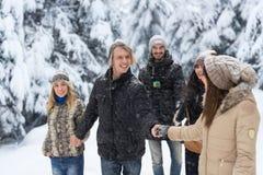De vrienden groeperen Openlucht Lopen van Sneeuwforest happy smiling young people Stock Foto