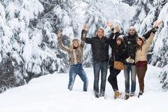 De vrienden groeperen Sneeuw Forest Happy Smiling Young People Openlucht Royalty-vrije Stock Afbeelding