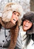 De vrienden van de winter royalty-vrije stock afbeelding