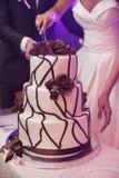 de vrij jonge bruid en de bruidegom snijden de huwelijkscake Stock Afbeelding