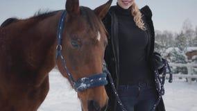 De vrij jonge vrouw loopt met een mooi wit paard die haar holding leiden een stijgbeugel over een snow-covered boerderij van het  stock footage