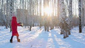 De vrij jonge vrouw in rood de winterjasje en gevoelde laarzen loopt in schilderstadspark met berken en werpt sneeuw stock video