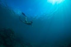De vrije duik van vrouwen Stock Fotografie