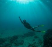 De vrije duik van vrouwen Royalty-vrije Stock Foto's