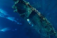 De vrije duikermens duikt bij schipbreuk, onderwater royalty-vrije stock foto's
