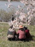 De vrije tijd van de lente stock afbeeldingen