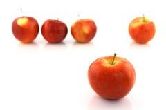 De vrijwilliger van de appel Stock Afbeeldingen
