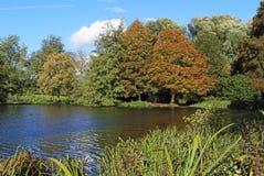 De vroege Herfst op de Rivier Theems in Berkshire, Engeland Royalty-vrije Stock Foto