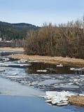 De vroege lente - bergrivier met een vliegend ijs Stock Foto's