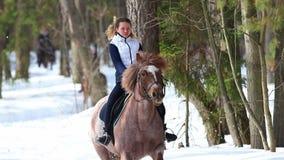 De vroege Lente Een vrouw die een paard in het bos berijden stock videobeelden