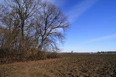 De vroege lente in het platteland Royalty-vrije Stock Foto's