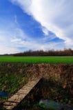 De vroege lente in het platteland Stock Afbeeldingen