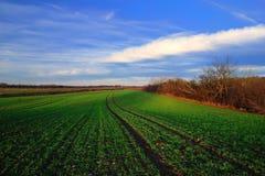 De vroege lente in het platteland Royalty-vrije Stock Afbeeldingen
