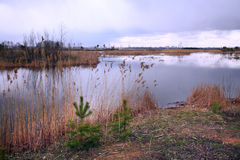 De vroege lente op de rivier Royalty-vrije Stock Fotografie