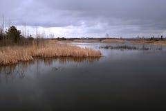 De vroege lente op de rivier Royalty-vrije Stock Foto's