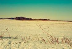 De vroege Lente Op gebieden begint de sneeuw te ontdooien Stock Foto's