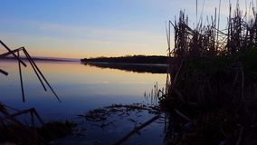 De vroege mening van de ochtenddageraad van kalm meer in de zomer Rustig oever van het meerlandschap stock video