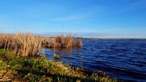 De vroege mening van de ochtenddageraad van kalm meer in de zomer Rustig oever van het meerlandschap stock videobeelden