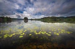 De vroege zomerlandschap van Jonsvatnet-meer dichtbij Trondheim, Noorwegen royalty-vrije stock foto's