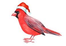 De vrolijke rode kardinaal van de Kerstmisvogel met de decoratie van de hoedengroet vector illustratie