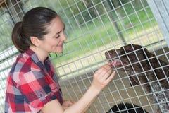 De vrolijke vrouw geeft hondsnoepjes door omheining Royalty-vrije Stock Afbeelding