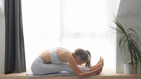 De vrouw die asanaoefeningen maken, zittend voorwaartse kromming stelt Gezonde Levensstijl stock videobeelden