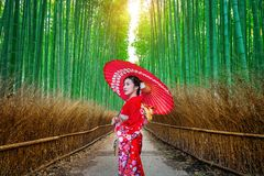 De vrouw die van bamboeforest asian Japanse traditionele kimono dragen bij Bamboebos in Kyoto, Japan stock afbeeldingen