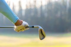 De vrouw die van de golfspeler een golfclub in golfcursus houden stock afbeelding