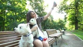 De vrouw die van de hondbabysitter selfie met twee hondenhuisdieren doen die op parkbank zitten stock footage
