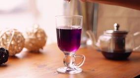 De vrouw drukt een citroen in a van blauwe Thaise thee Blauwe theereactie op citroensap De blauwe thee draait purper Langzame Mot stock video