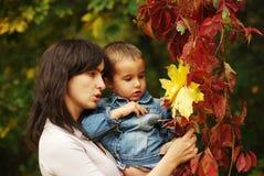 De vrouw en de jongen nemen bladeren op Stock Afbeelding