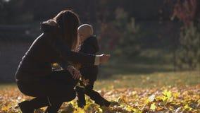 De vrouw en de zoon werpen op gele bladeren stock video